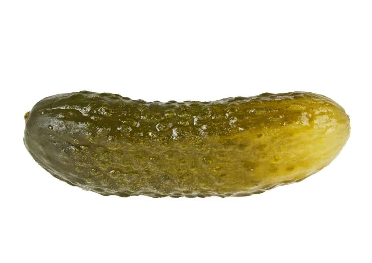 pickle baggage copy