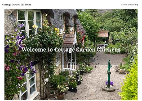 Cottage Garden Chickens